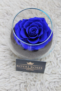 Royal Eternity Rose - Blue