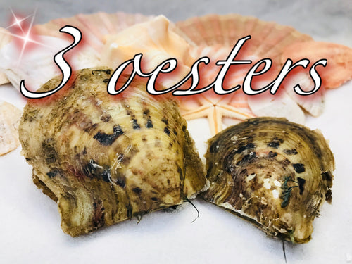 3 oesters