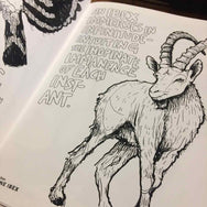 Esoteric Animal Coloring Book