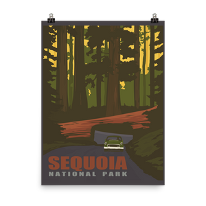 Sequoia National Park Vintage Travel Poster
