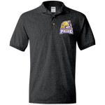 Minnesota Pride | Street Gear | Embroidered Jersey Polo Shirt