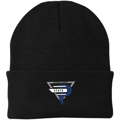 Esports at Penn State Altoona | Street Gear | Embroidered Knit Cap