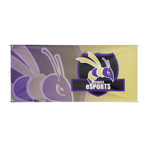 Defiance College Esports Flag
