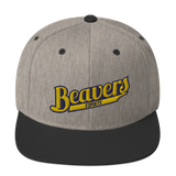 BVU Esports | Street Gear | Embroidered Snapback Hat