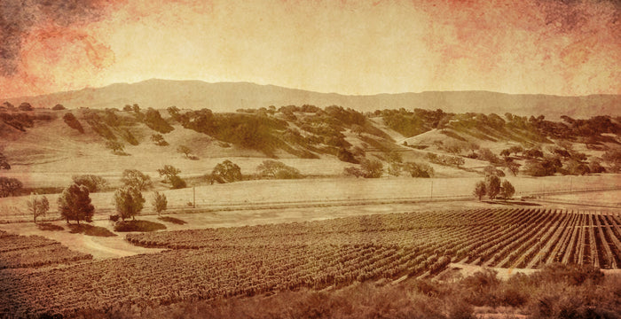 The History of Santa Barbara Wine Country, Part 1: The Early Years