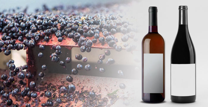 Martellotto Winery Announces Custom Crush and Private Label Wine Options