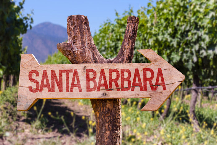 Santa Barbara County Wine: Close to Home Yet Adventurous in Spirit, Part One