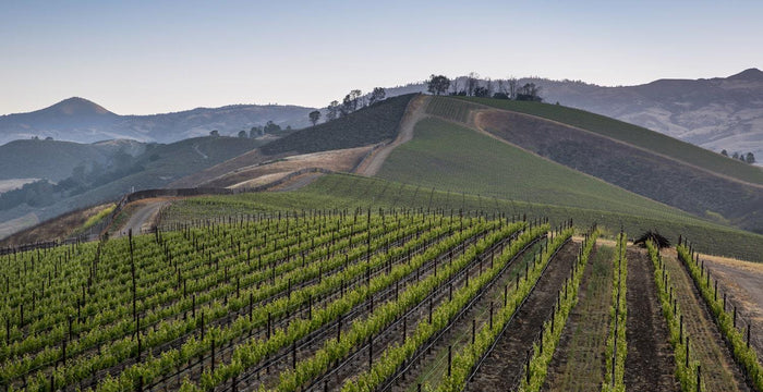 """Chateau Picard"" from Star Trek: Picard Calls Santa Barbara Wine Country Home"