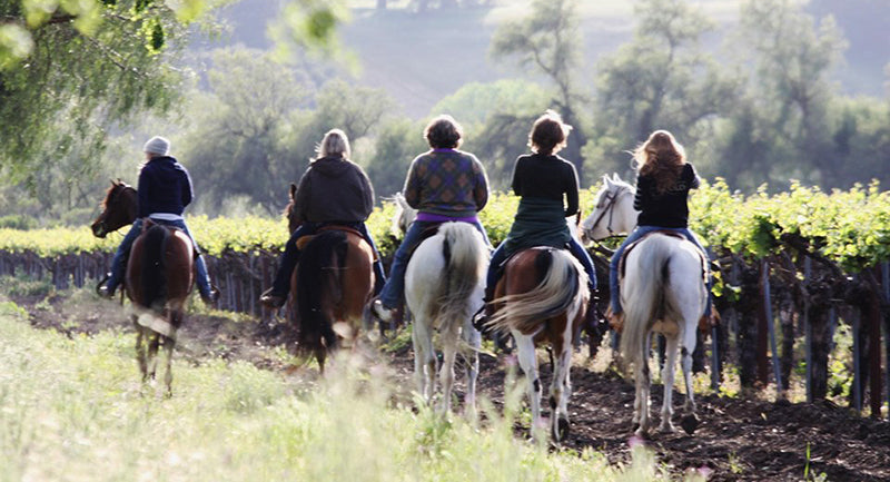 santa ynez wine trail horseback riding