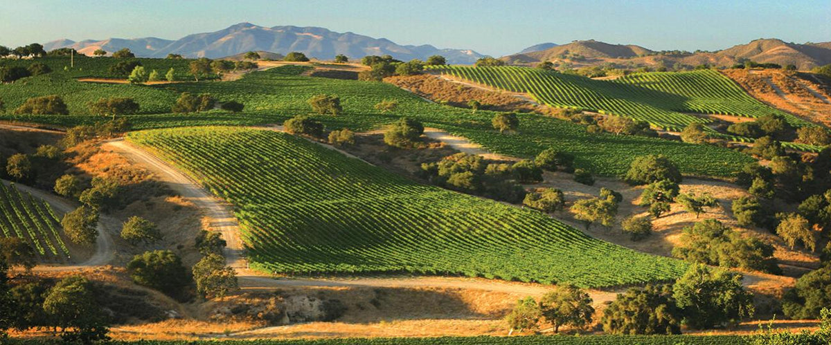 santa barbara wine country making its way
