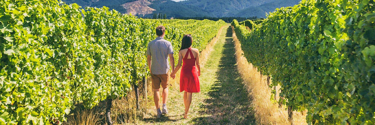 santa barbara wine country vineyards tourists