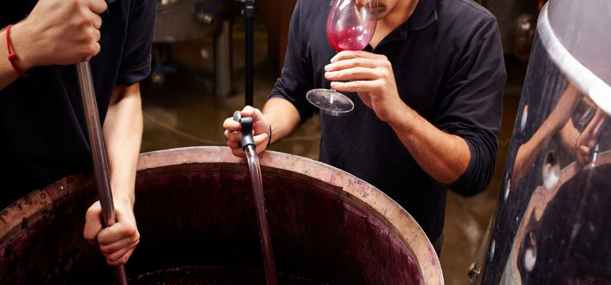 santa barbara wine industy growing impact