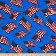 Made in the USA: Flag II Red/White/Blue (Half Yard)
