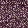 Purple Background with Small White Flowers ~ White on Dark Purple