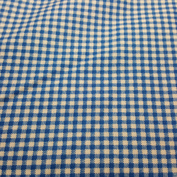 Blue and White Plaid 1/8