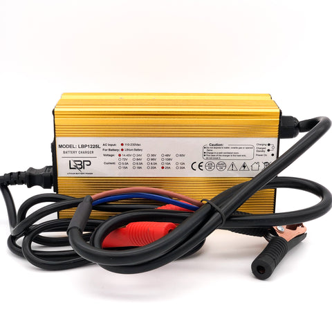 12v25A lithium charger