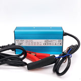 Lithium 24V 12A Electronic Battery Charger - Lithium Battery Power, LLC