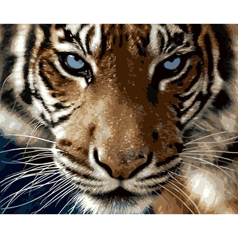 realistic tiger adult diy paint by numbers kit