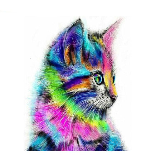multicolor kitten adult diy paint by numbers kit