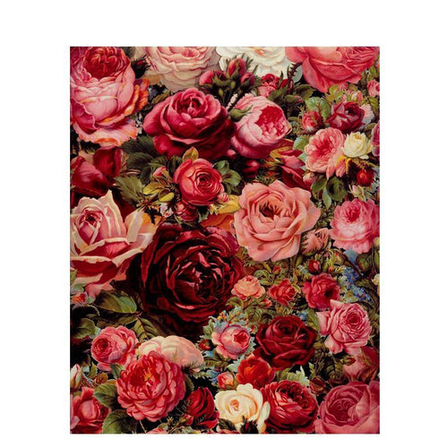 realistic roses adult diy paint by numbers kit