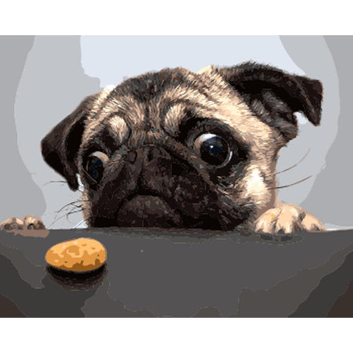 pug and a cookie adult diy paint by numbers kit