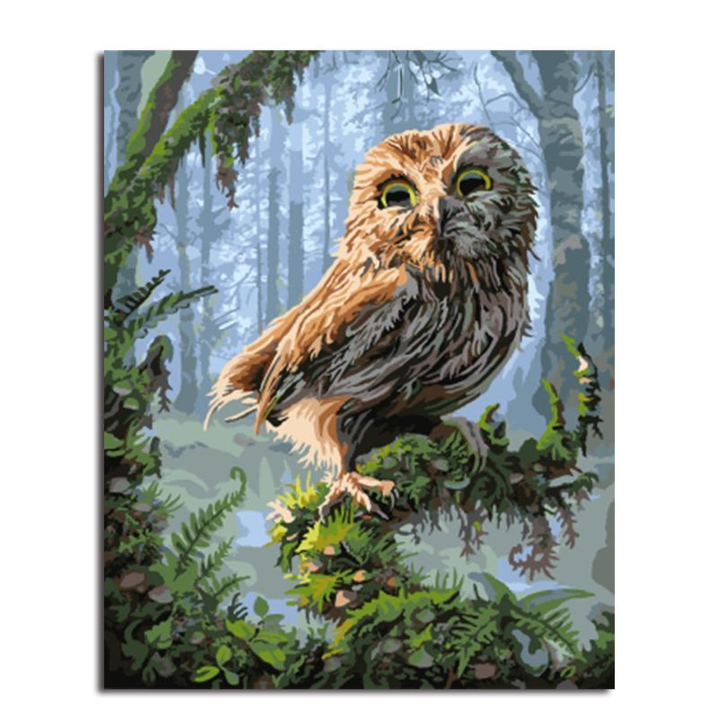 realistic owl adult diy paint by numbers kit