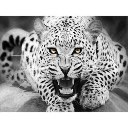 realistic leopard in grey and black adult diy paint by numbers kit