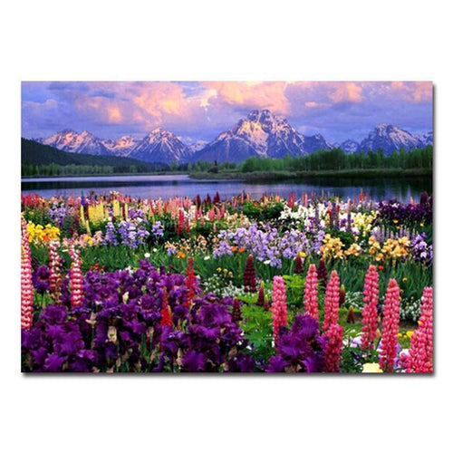 field of flowers adult diy paint by numbers kit