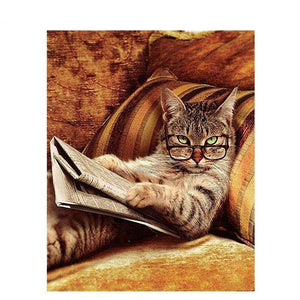 cat reading the paper adult diy paint by numbers kit