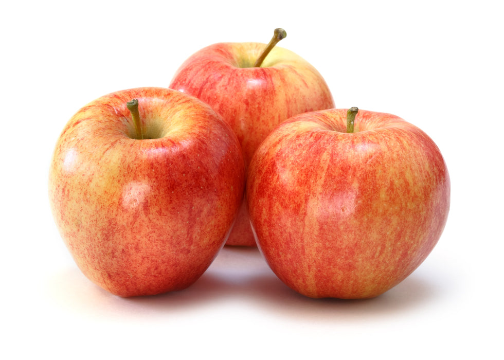 Gala Apples 6pc pack  for $4.1
