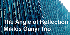 AS166 MIKLOS GANYI TRIO - THE ANGLE OF REFLECTION