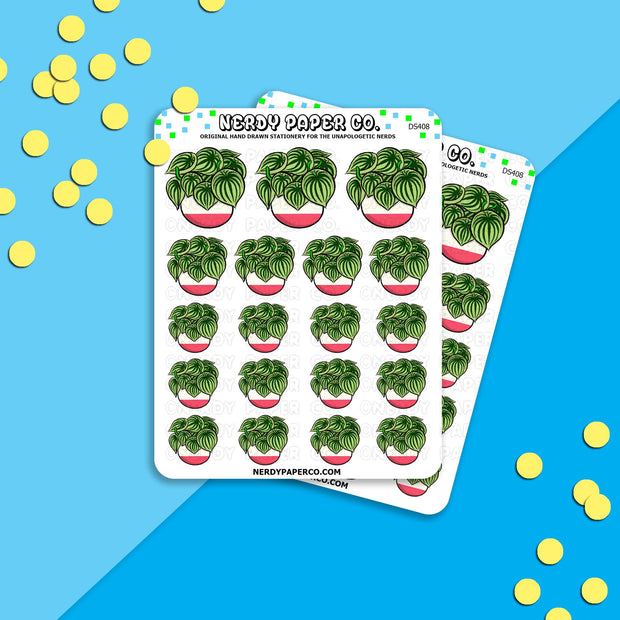 WATERMELON PEPEROMIA - Hand Drawn Inspired Planner Stickers - Deco -DS408