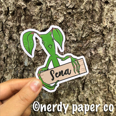 CUSTOM NAME BOWTRUCKLE - Hand Drawn Wizard Planner Die Cut