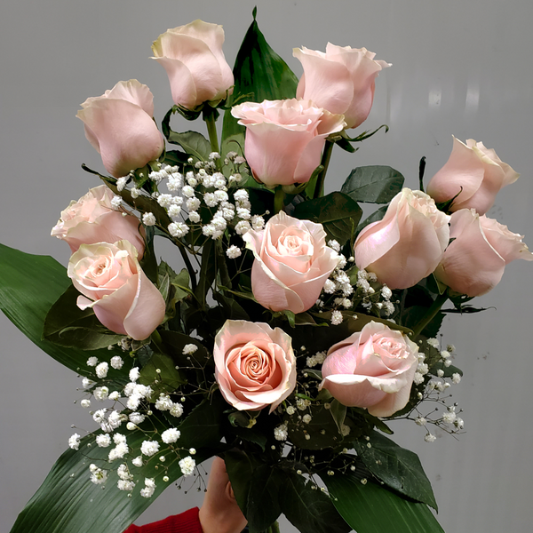 Dozen Light Pink Roses