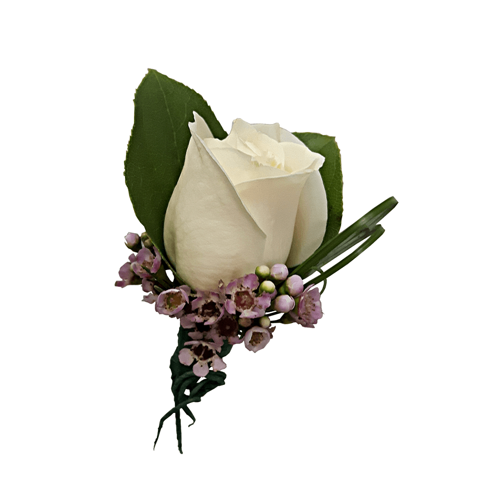 White Wax Rose Boutonniere