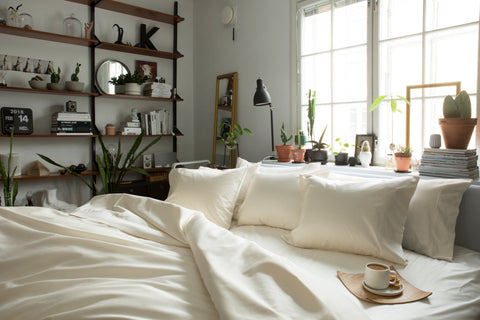 Beige bedding setting in plant natural lit room