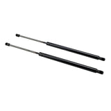 2 Glass Lift Supports Struts Shock -6152 | 20716982