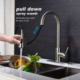 Single Handle High Arc Pull out Kitchen Faucet with Pull down Sprayer Stainless Steel Sink Faucet | 41538923