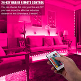 12V 10M Dual-Disk SMD 2835 Lamp Beads 300 Lamp-RGB-IR44-Non-Waterproof And Non-Glue 24-Key Light Strip Set (40W White Light Board)  | 50027197