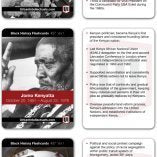Urban Intellectual Black History Flash Cards Inspiring Packed w/ Information