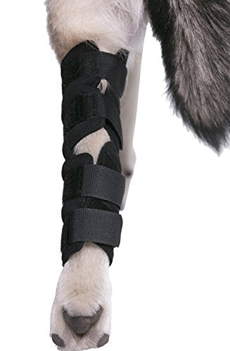 Knee Brace For Dogs Hock Protector ACL Therapeutic Pet Dog Rear Leg 4 Straps L