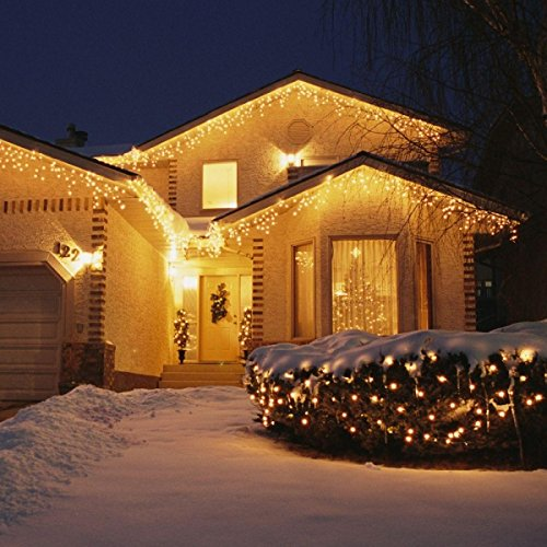 33ft 100 LED String Lights 2 Pack Dimmable with Remote Control, TaoTronics for