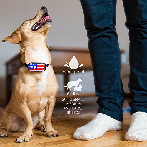 Small Rechargeable Dog Bark Collar For Tiny To Medium Dogs by GoodBoy Waterproof