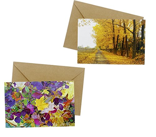 48 Pack All Occasion Assorted Blank Note Cards Greeting Card Bulk Box Set - 6 Fa