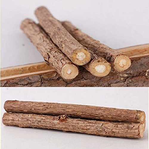 Malier 40 Pieces Cat Catnip Natural Matatabi Silvervine Chew Sticks Teeth Grin