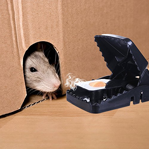 Mouse Trap Mice Traps Vole Catcher Snap Humane Power Rodent Rat Killer The Best