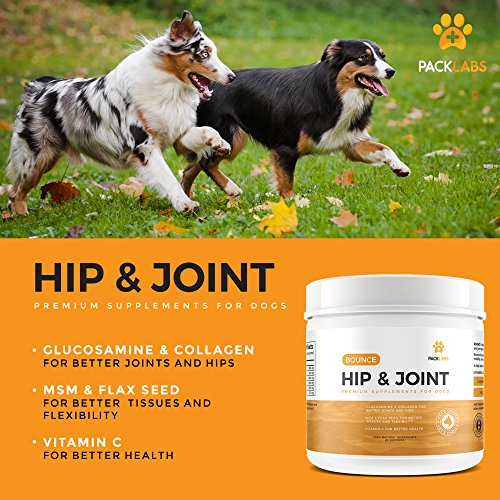 Advanced Hip & Joint Supplement for Dogs – An Effective Dose of Vitamin C, Glucosamine, MSM, Chicken Collagen Type II, Beef Liver Powder and Cold Milled Flax Seed, without any fillers (6.2 Ounces)