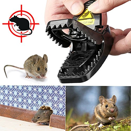 Best Mouse Trap, LENKA Mice Trap Snap Humane Power Rodent Killer - Reusable & -