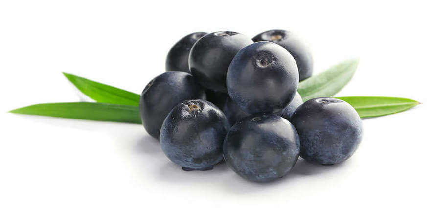 acai berries for inflammation on white background