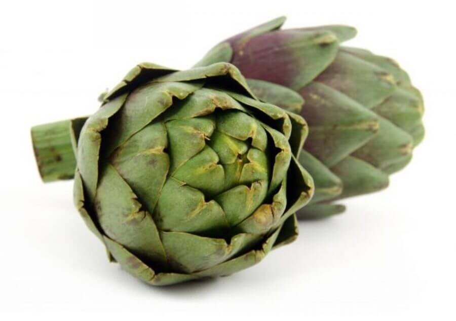 globe artichoke for liver support omnibiotics supplement
